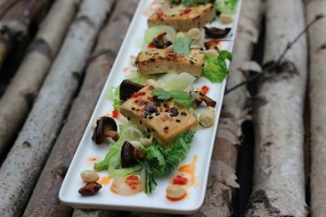low carb,c section,weightloss,diet,lose weight,tofu, plant,protein